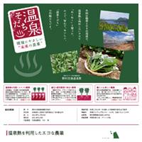 野村北海道菜園ウェブサイト